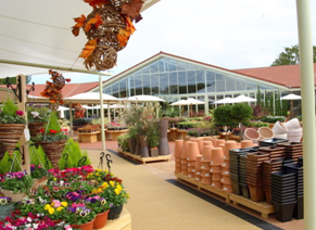 Blue Diamond garden center